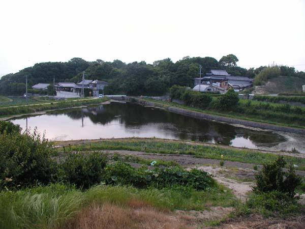淡路でキャンプとバス釣り