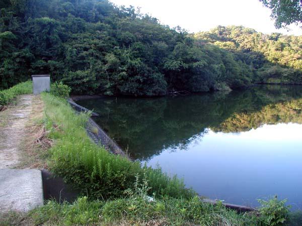 淡路島のキャンプとバス釣り